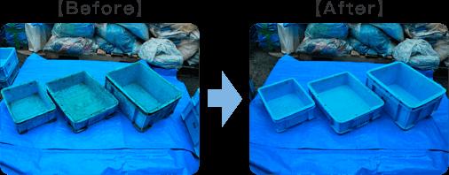 プラスチックコンテナー洗浄before after